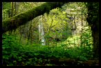 Visit the Columbia River Gorge Wallpaper Gallery
