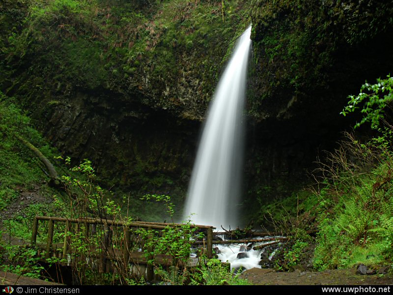 Upper Latourell Falls: Upper Latourell Falls in the Columbia River Gorge National Scenic Area.