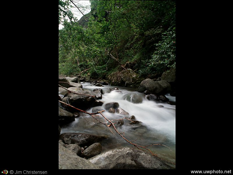 Mountain Stream: Water rushes down a mountain stream in Maui Hawaii.